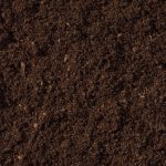 Aged Compost