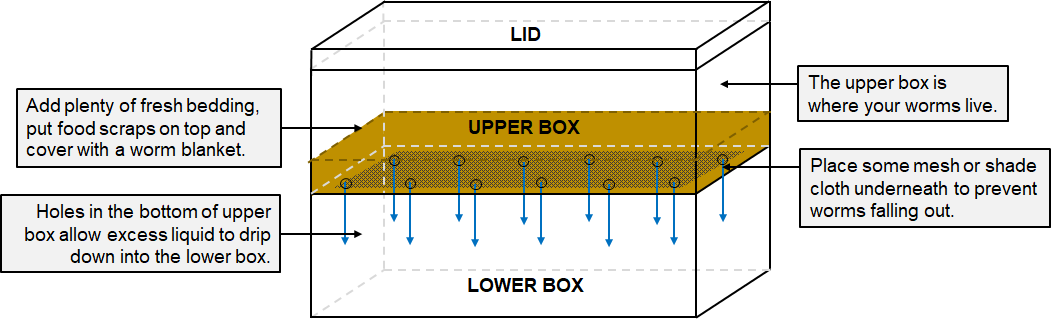 The design of a DIY worm bin made from polystyrene boxes.