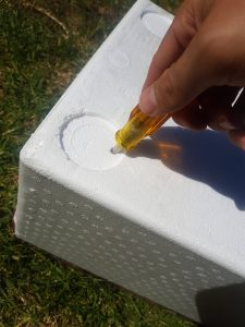 Poke some holes through the bottom of the upper box. This allows any excess liquid to collect in the lower box.