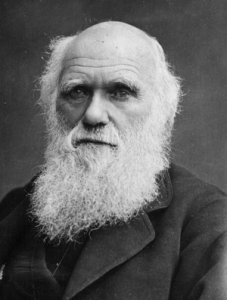 Charles Darwin was fascinated with worms.