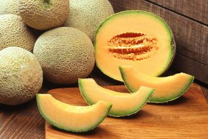 Be aware of the water content of foods that you add into the worm bin. Cantaloupe for example is 90% water.