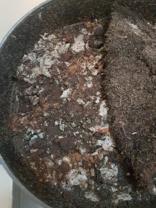 Added a thin layer of coffee grounds into the worm bin on one side. Mixed in with lots of shredded paper and cardboard.