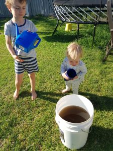 I have some helpers to fertilize the garden using worm tea!